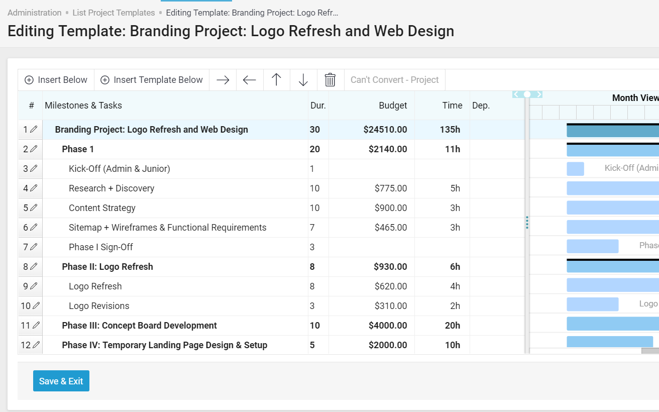 Accelo's unlimited project template for project management